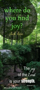 Where Do You Find Joy?