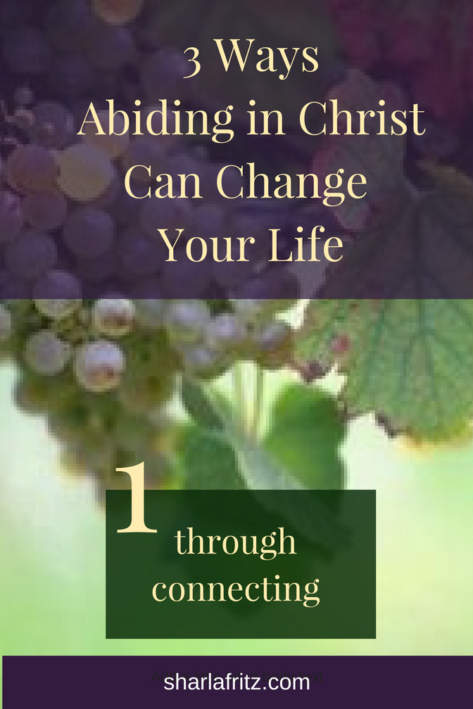 3 WaysAbiding in ChristCan Change Your Life