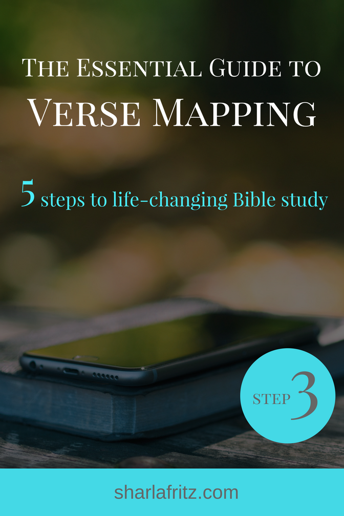 The EssentialGuide to VerseMapping3
